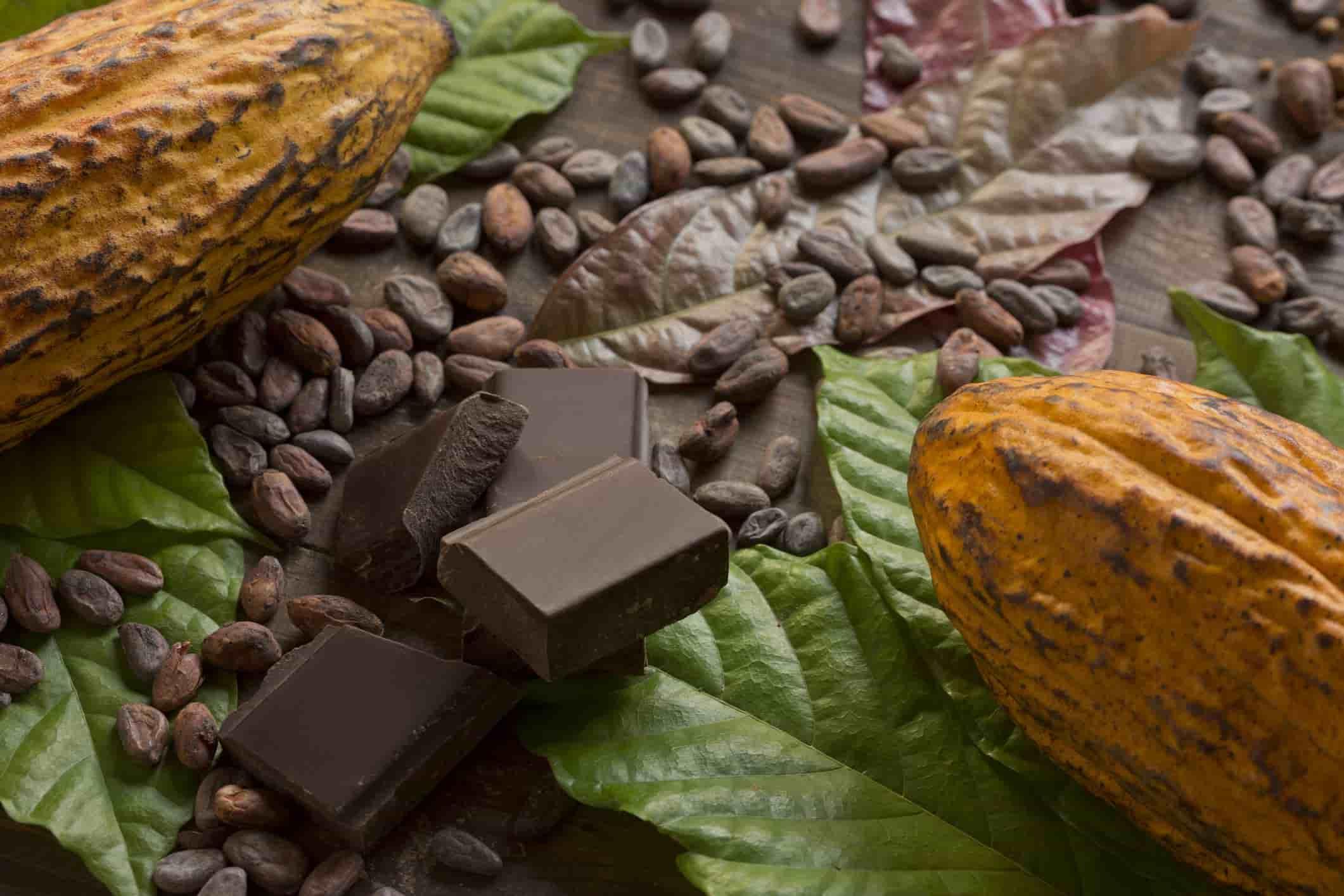 Histoire du chocolat: le produit qui a envahi le monde