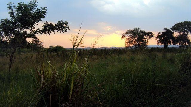 4 des plus beaux lieux naturels à découvrir au Sri Lanka