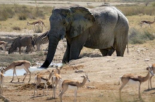 Quelques conseils pour préparer son séjour en Namibie